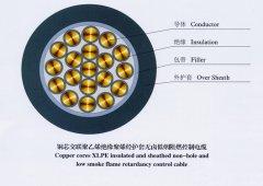 DWZ-KYJYP,DWZ-KYJYP2,低烟无卤阻燃型控制电缆