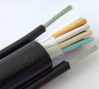 电动葫芦钢丝电缆