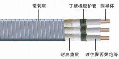 QYPN钢带铠装扁形潜油泵电力电缆