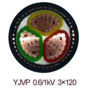 屏蔽电力电缆YJVP 3*120