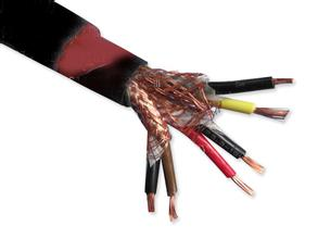 ZR-DJYPVZR-DJYVPZR-DJYPVP阻燃屏蔽电缆
