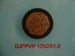 DJFPVP 12*2*1.0 计算机屏蔽耐高温电缆