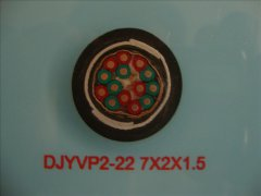 DJYVP2-22 7*2*1.5铠装屏蔽计算机电缆