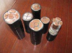 塑料绝缘电力电缆