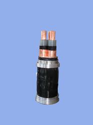 YJLV22-P金属屏蔽电力电缆
