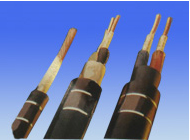 70℃电机引接软电缆