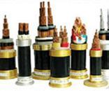 NH-VV22 耐火铠装电力电电缆