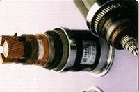 BRYJVP12R-TK,ZRBPYJVP12R-TK变频电缆