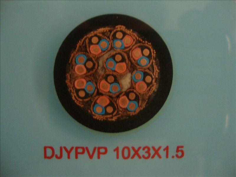 DJYPVP 10*3*1.5 计算机屏蔽电缆