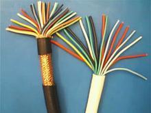 ZR-DJYPV 3*2*1.0阻燃计算机电缆