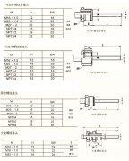 轴向型双金属温度计WSS-401