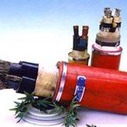UGEFP 3*50+3*16电缆-UGEFHP露天矿用高压耐寒橡套软电缆