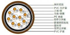 热电偶电缆,多对分屏蔽/总屏蔽加铠装热电偶补偿电缆线