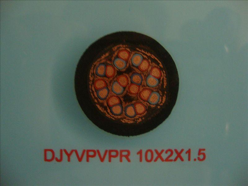 低烟无卤阻燃计算机电缆WDZ-DJYPYPR