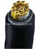 WDZN-KYJYP2 3*4铜带屏蔽无卤低烟阻燃控制电缆
