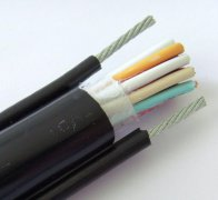 带钢丝绳的PVC行车控制电缆