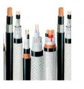 氟塑料耐高温耐油电缆