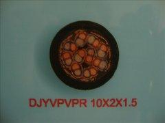 计算机电缆DJYVPVPR-10*2*1.5