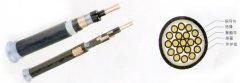 氟塑料绝缘聚乙烯护套耐高温控制电缆