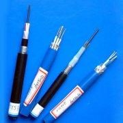 EISC-S,EISC-S22,EISC-SS,EISC-SS-R本安防爆电缆