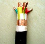 BPGG,BPYJVPP2变频器专用电缆
