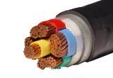 FF聚全氟乙丙稀绝缘护套耐高温电力电缆