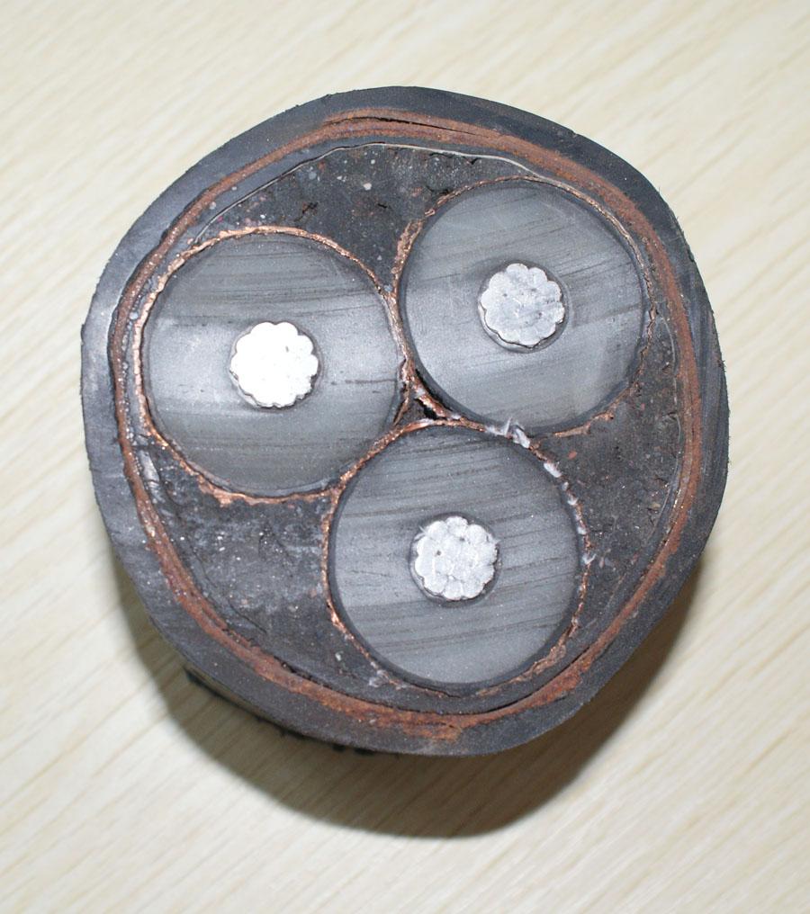 ZR-YJV 交联聚乙烯绝缘聚氯乙烯护套阻燃电力电缆