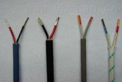 KX-HS-FBRP1-2*1.0补偿导线生产技术规范