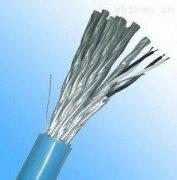 IA-ZR-DJYP3VP3R 2*2*1.0防爆型计算机电缆