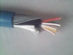 DJYVPR32 DJYPVR32 DJYP2V32钢丝铠装电子计算机用电缆