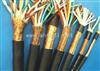 ZR-DJYPVP22-24*2*1.0钢带铠装计算机电缆